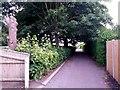 SZ0694 : Wallisdown: footpath U16 passes trees in a back garden by Chris Downer