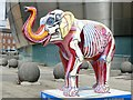 SK3586 : Herd of Sheffield: Elephant Inside Out by Graham Hogg