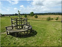 SO8845 : Seat in Croome Park by Philip Halling