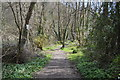 SX4371 : Tamar Valley Discovery Trail by N Chadwick