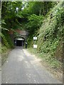 ST7661 : The southern entrance of Combe Down tunnel by David Smith