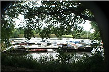 TQ1773 : View of boats moored on the Thames by the passenger ferry to Ham House by Robert Lamb