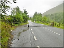 SN9817 : Rhyd Uchaf, cattle grid by Mike Faherty