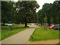 TQ2172 : Richmond Park by Malc McDonald