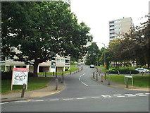 TQ2173 : Tangley Grove, Roehampton by Malc McDonald