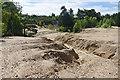 SU9052 : Sand gullies, Ash Ranges by Alan Hunt