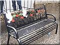 NO7967 : Beautiful bench by Michael Dibb