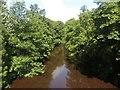 NZ1785 : The River Wansbeck at Snuff Mill by Graham Robson