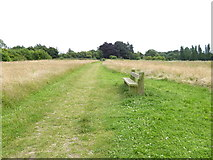 TQ6668 : London Countryway in Kent (31) by Shazz