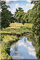 SP2656 : River Dene, Charlecote Park by David P Howard