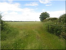 NZ1883 : Grass field gateway by Graham Robson