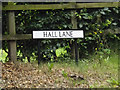TM0080 : Hall Lane sign on Hall Lane by Adrian Cable