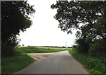 TM0080 : Hall Lane, Blo' Norton by Adrian Cable