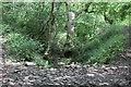 ST1799 : Dry ford on Nant Cwm-crach by M J Roscoe