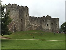 ST5394 : Chepstow Castle by Alan Hughes