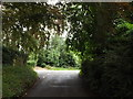 TL1916 : Bride Hall Lane, Ayot St Lawrence by Adrian Cable