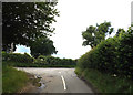 TL1717 : Bibbs Hall Lane, Blackmore End by Adrian Cable