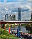 TQ3784 : Waterworks River, Queen Elizabeth Olympic Park by Julian Osley