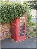 SO8454 : Overgrown K6 telephone box by Philip Halling