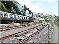 SX8851 : Steaming into Kingswear, Devon by Derek Voller