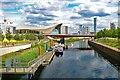 TQ3884 : Aquatics Centre: view from Waterworks River by Julian Osley