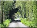 TQ3199 : Tingeys Top Lane, EN2 by Mike Quinn
