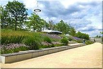 TQ3784 : Flower bed, Queen Elizabeth Olympic Park by Julian Osley
