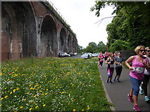 SO8455 : Worcester - Race for Life by Chris Allen