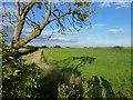 TF3902 : Guyhirn Wash near Rings End by Sandra Humphrey