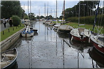 TG4022 : Pleasure Boat Staithe, Hickling Broad by Peter Turner