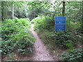 SU9485 : Permissive path in Egypt Woods, with notices by David Hawgood