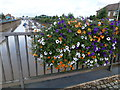TF4609 : The Yacht Harbour - Wisbech in Bloom 2016 by Richard Humphrey
