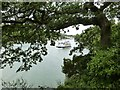 SX8754 : Pleasure boat the Dart Explorer glides up-stream on the River Dart past the gun battery on the Greenway Estate by Derek Voller