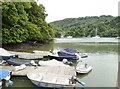 SX8654 : Looking South from Greenway quay on the River Dart, Devon by Derek Voller