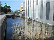 TQ3296 : The New River in front of Enfield Civic Centre, Silver Street, EN1 (2) by Mike Quinn