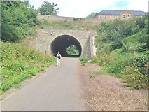 SY6778 : Weymouth, tunnel by Mike Faherty
