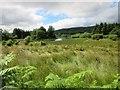 NR9567 : Lochan, near Kilbride Bay by Euan Nelson