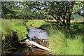 NN1903 : Allt Criche nearing the River Goil by Alan Reid
