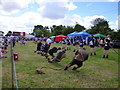 TF1444 : Tug of war - Heckington Show 2016 by Richard Humphrey