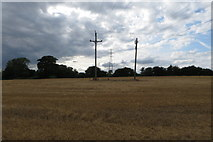 SP6830 : Pylon and electric cables by Philip Jeffrey
