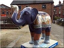 SK3588 : Herd of Sheffield: Marjorie by Graham Hogg