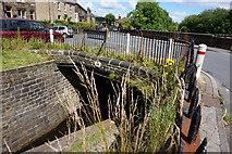 SE0511 : Bridge #56 Marsden Lane by Ian S