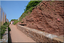 SX9777 : Dawlish Warren : Coastal Path by Lewis Clarke