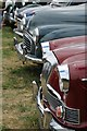 SO8040 : Grilles of vintage cars, Welland Steam Rally by Philip Halling