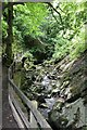 SC4178 : Pathway through Groudle Glen by Richard Hoare