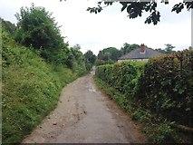 TQ6059 : Pilgrims Way, Wrotham by Chris Whippet
