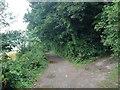 TQ5959 : Pilgrims Way, near Wrotham by Chris Whippet