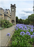 TQ3473 : Horniman Museum, London Road, Forest Hill by pam fray