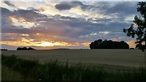 SK6739 : Sunset from near Saxondale by David Lally