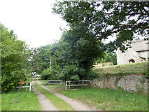 TM3898 : Path to Little Church Farm by Basher Eyre